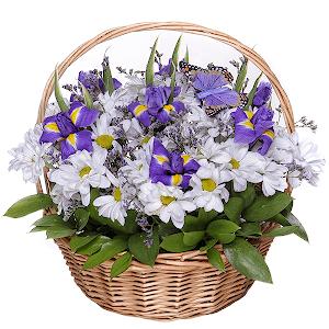 Любимый сюжет +30% цветов с доставкой в Омске