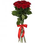 Букет из 9 красных роз - премиум